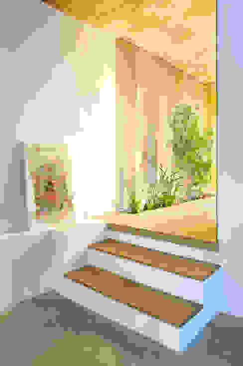 Pasillos, halls y escaleras rústicos de Egue y Seta Rústico