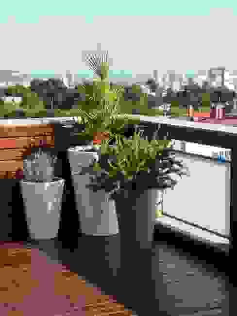 REMODELACIÓN DE TERRAZAS Y INTERIOR DE UN ÁTICO EN ESPLUGUES DE LLOBREGAT Balcones y terrazas de estilo mediterráneo de Taller de Paisatge Mediterráneo