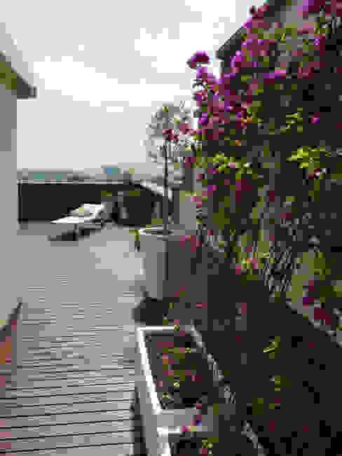 Taller de Paisatge Balkon, Beranda & Teras Gaya Mediteran