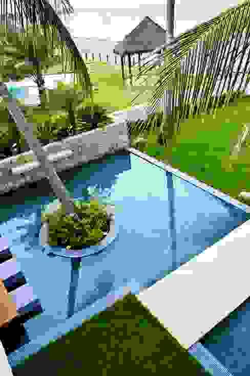 Tropische Pools von homify Tropisch