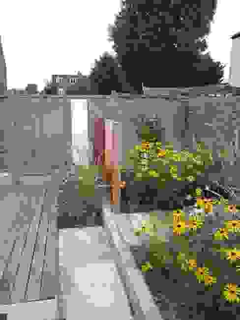 Modern Family garden in North London Modern style gardens by Earth Designs Modern