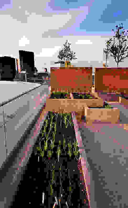 Victoria 2, London モダンデザインの テラス の Urban Roof Gardens モダン