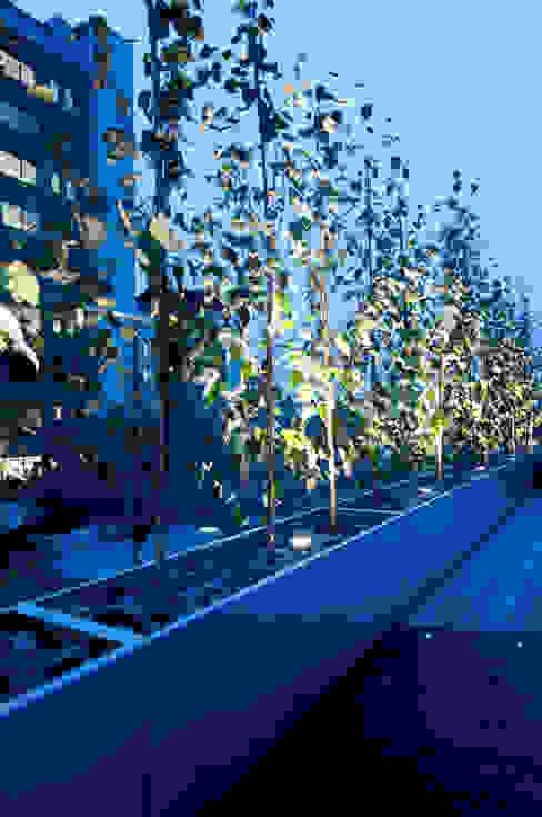 London Bridge, London Balcone, Veranda & Terrazza in stile moderno di Urban Roof Gardens Moderno