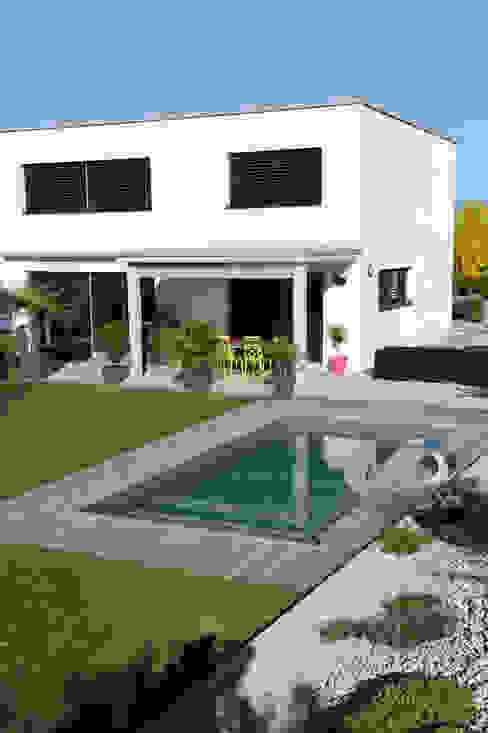 Piscinelle Modern Pool