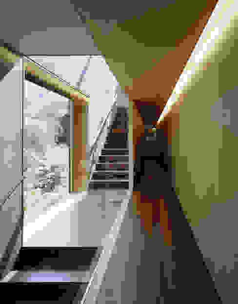 Pasillos, vestíbulos y escaleras de estilo moderno de Dietrich | Untertrifaller Architekten ZT GmbH Moderno