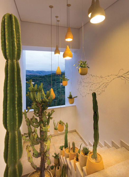 CASA COR MINAS 2014: Jardins  por Luiza Soares - Paisagismo