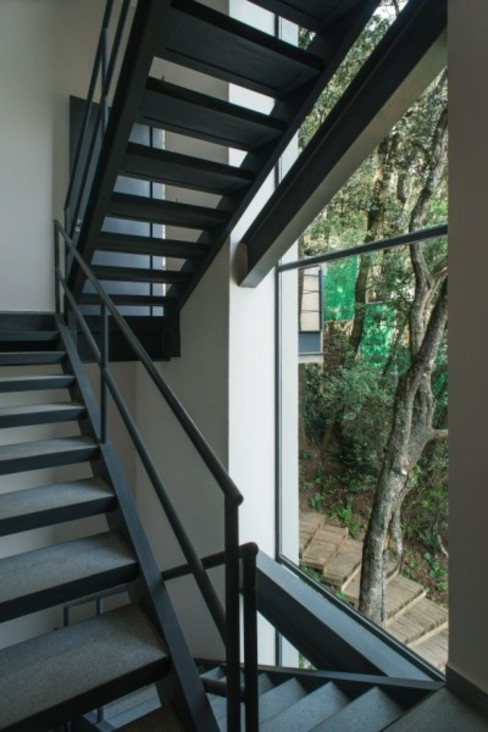 Escaleras Servicio de Rhyzoma - Arquitectura y Diseño Moderno