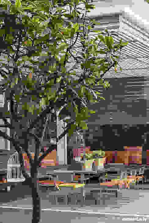 Balcones y terrazas de estilo moderno de MARIANGEL COGHLAN Moderno