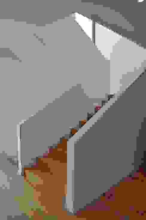 Moderner Flur, Diele & Treppenhaus von Pracownia Projektowa Ola Fredowicz Modern