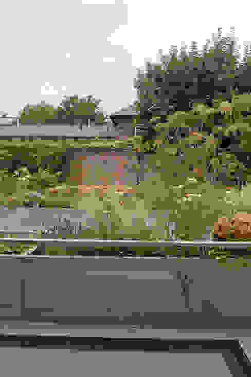 Fentiman Road, Vauxhall Modern balcony, veranda & terrace by Emmett Russell Architects Modern
