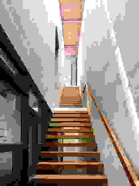 ห้องโถงทางเดินและบันไดสมัยใหม่ โดย HYLA Architects โมเดิร์น