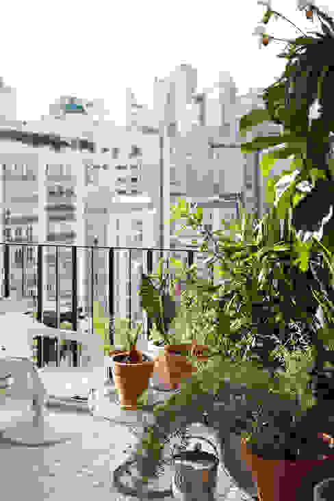 Mauricio Arruda Design Eclectic style garden