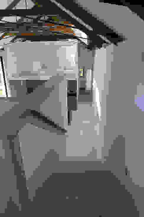 M House Nowoczesny korytarz, przedpokój i schody od JAMIE FALLA ARCHITECTURE Nowoczesny Drewno O efekcie drewna