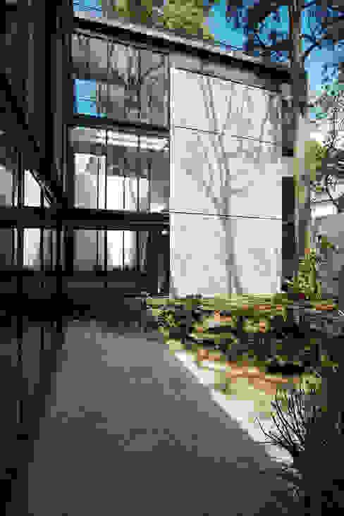 Modern garden by Gaeta Springall Arquitectos Modern