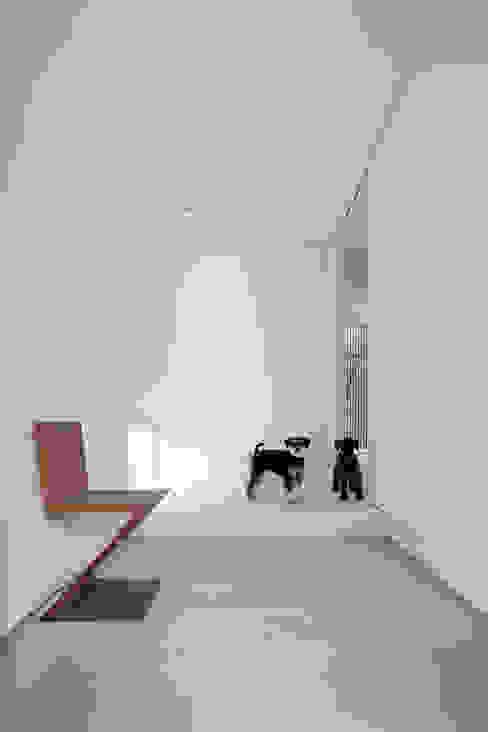 Corridor & hallway by ARCHSOL DESIGN, Modern
