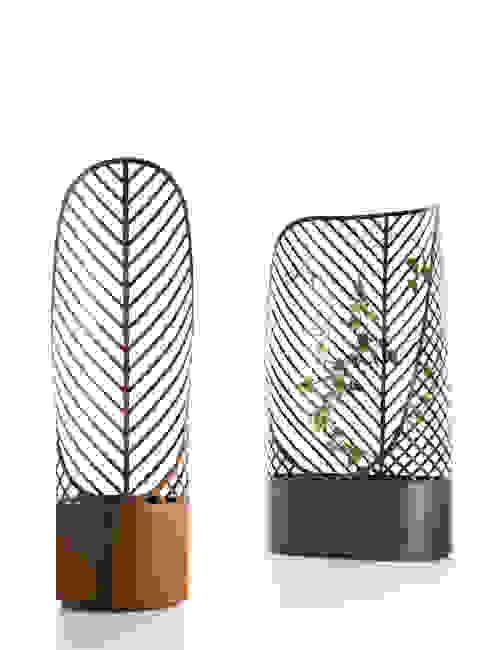 modern  by  François Clerc Design, Modern