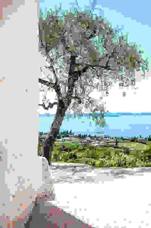 30 - Veduta del Lago di Garda dalla corte Casa rurale di Studio Athesis Rurale