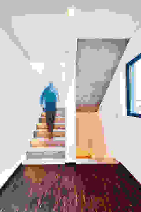 Single Family House in Heppenheim, Germany Hành lang, sảnh & cầu thang phong cách hiện đại bởi Helwig Haus und Raum Planungs GmbH Hiện đại