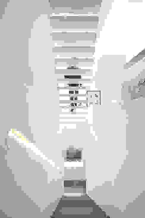 모던스타일 복도, 현관 & 계단 by Barbosa & Guimarães, Lda. 모던