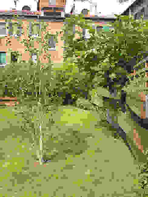 esterno - giardino con vasche pensili Case moderne di nicola feriotti studio Moderno