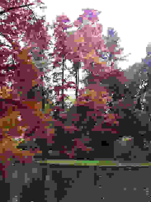 Classic style garden by Dal Ben Giardini Classic