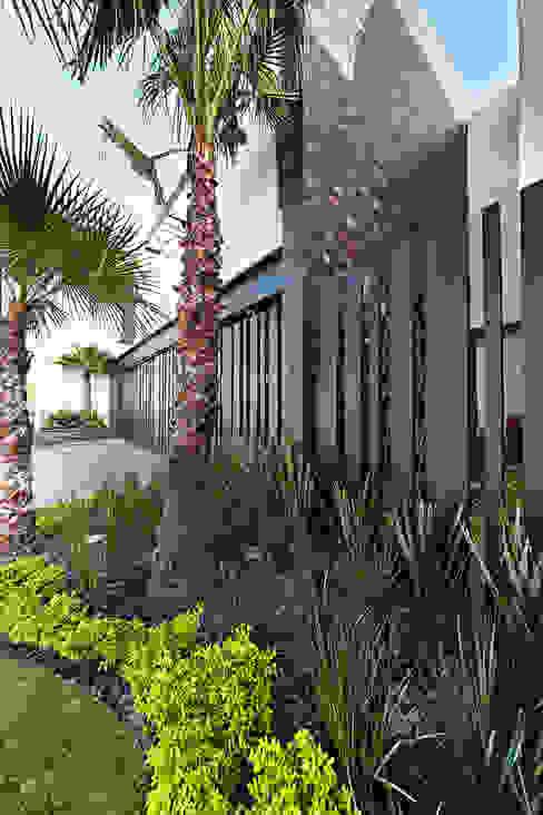 Casas estilo moderno: ideas, arquitectura e imágenes de Arquiplan Moderno