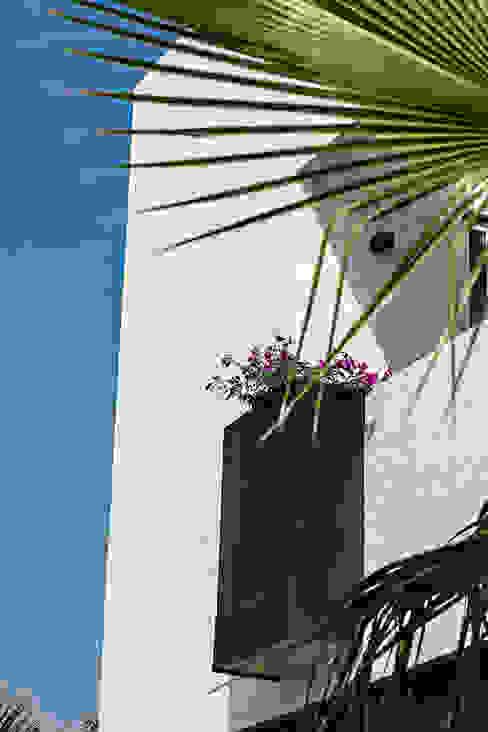 Modern style gardens by ARQUIPLAN Modern