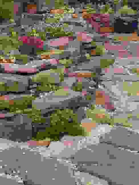 Auswahl der Steine ist Geschmacksache von Andreae Kakteenkulturen Rustikal