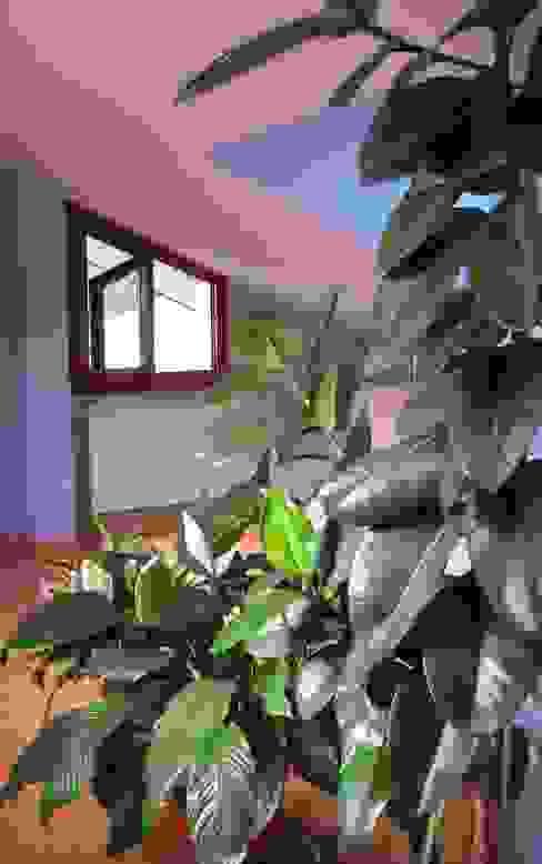 مكتب عمل أو دراسة تنفيذ Tiziano Codiferro -  Master Gardener, كلاسيكي