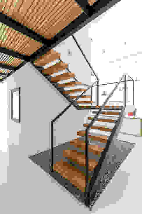 KROPKA STUDIO'S PROJECT Modern Corridor, Hallway and Staircase by Kropka Studio Modern