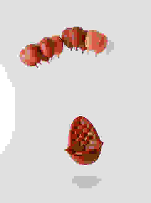 Balloon Chair de h220430