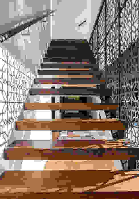 Godden Cres Moderner Flur, Diele & Treppenhaus von Dorrington Atcheson Architects Modern