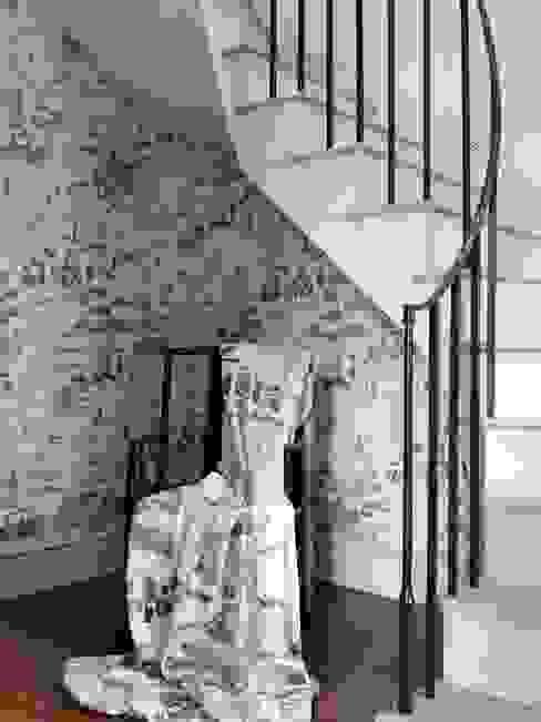 NC And Osborne & Litle: modern  by Nina Campbell, Modern