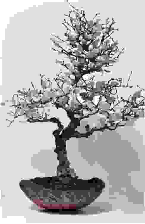 bonsai, petales de porcelaine, coupe raku par bbceramic Éclectique