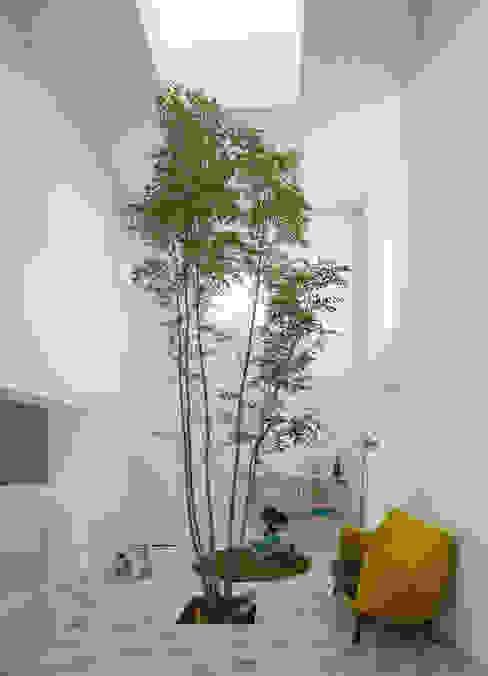 Living room by ソルト建築設計事務所, Modern
