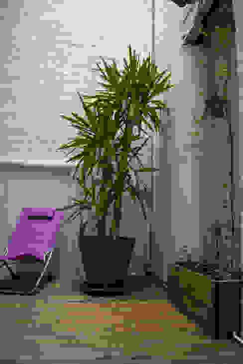 Après - Jardin d'hiver: Jardin d'hiver de style  par L&D Intérieur , Moderne