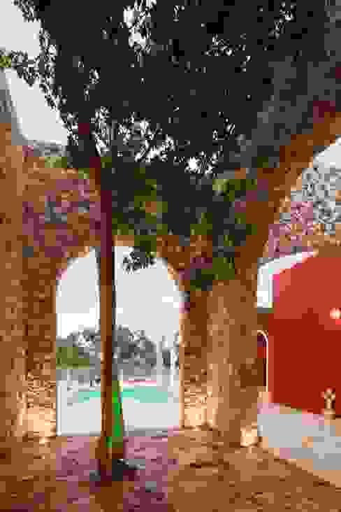 Árbol Chaká Balcones y terrazas coloniales de Arturo Campos Arquitectos Colonial