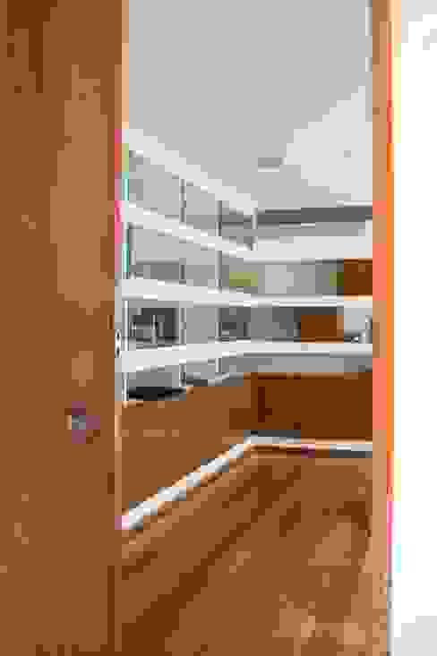 Modern Windows and Doors by Atelier d'Arquitetura Lopes da Costa Modern