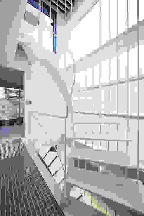 階段 オリジナルスタイルの 玄関&廊下&階段 の 岩井文彦建築研究所 オリジナル