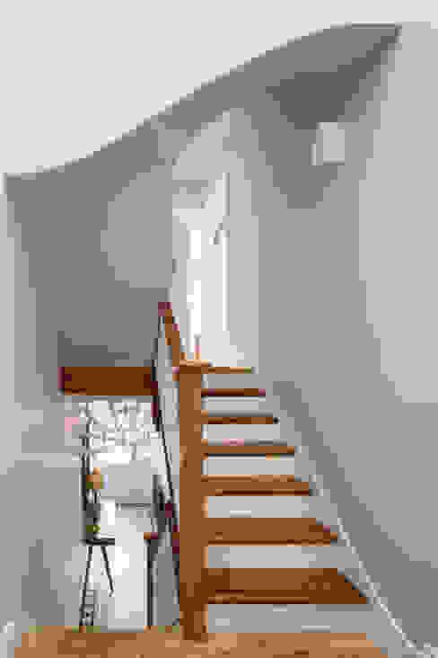 Homerton Modern corridor, hallway & stairs by Scenario Architecture Modern