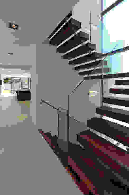 Greystones Nowoczesny korytarz, przedpokój i schody od Nicolas Tye Architects Nowoczesny