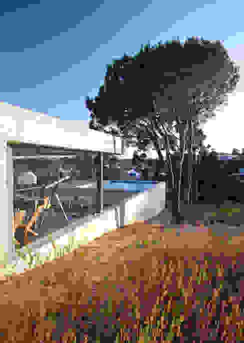 Minimalistische huizen van Phyd Arquitectura Minimalistisch
