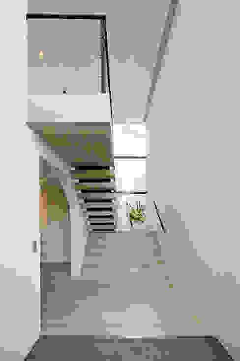Couloir, entrée, escaliers modernes par エスプレックス ESPREX Moderne
