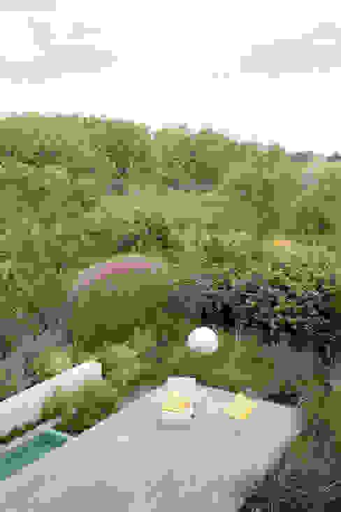 minimalistic architecture floating in dune landscape 根據 Andrew van Egmond (ontwerp van tuin en landschap) 現代風