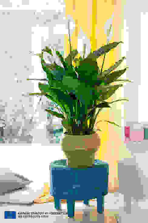 Pflanzenfreude.de Paisagismo de interior