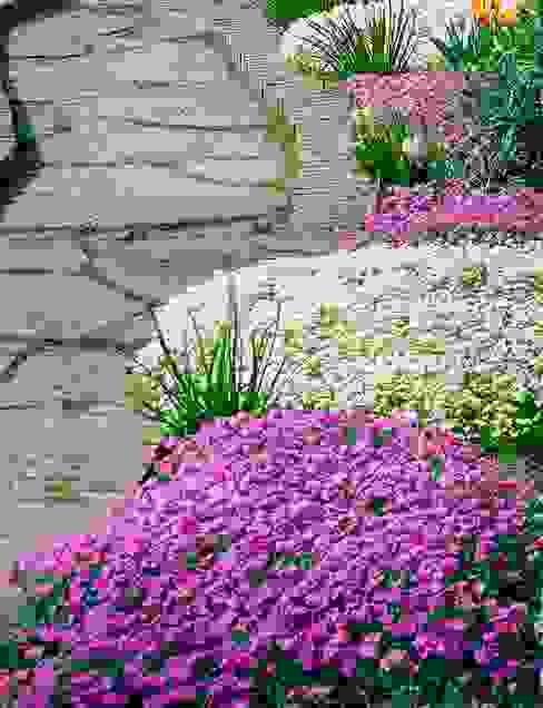 Jardin de style  par Pflanzenfreude.de,