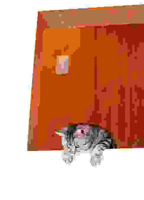 猫と暮らす家 モダンデザインの リビング の Unico design一級建築士事務所 モダン