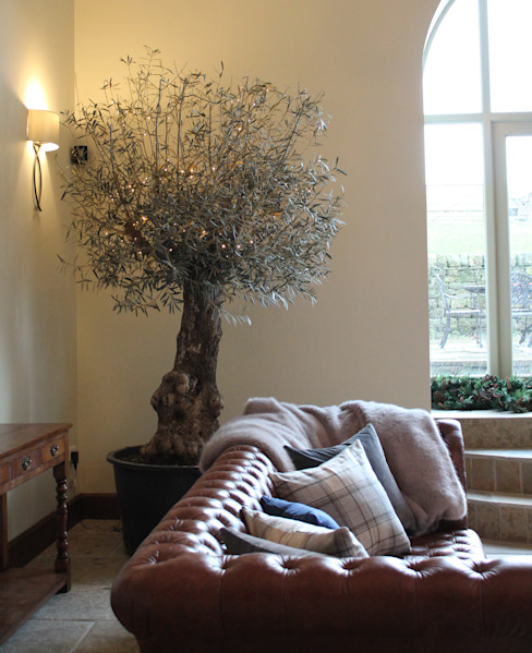 The Indoor Olive Tree Ruang Keluarga Gaya Eklektik Oleh Vanessa Rhodes Interiors Eklektik