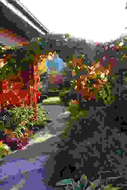 Jesienna szata winorośli japońskiej od Garden Idea - Projektowanie Ogrodów Klasyczny