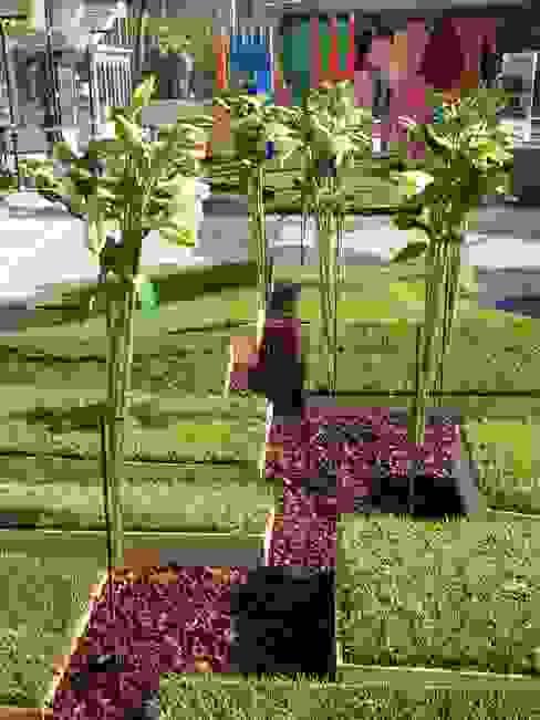 Minimalist Bahçe Moira Busato Landscape Minimalist